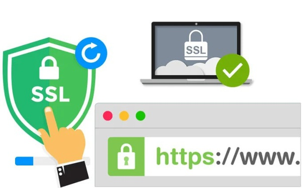 Importance of SSL certificates for SEO Websites